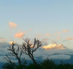 Pelling View from Garden 1